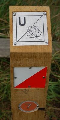 Orienteering Post