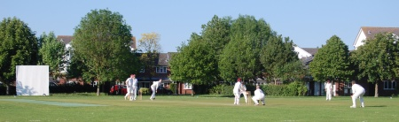 Baileys Court Cricket Ground