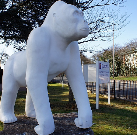 Wow! Gorilla No.62 in the garden of Dunkley's in Bradley Stoke