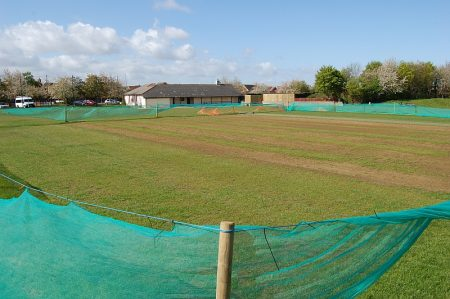 Weedkiller-damaged wickets at Baileys Court cricket ground.