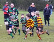 St Mary's Old Boys RFC Under-9s in action against St Brendan's.