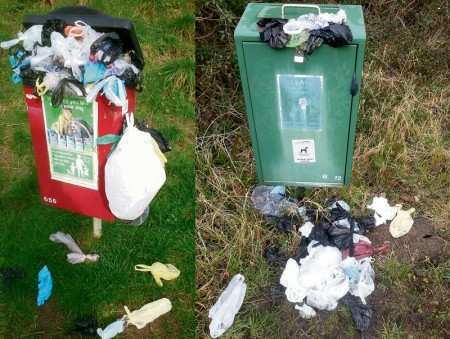 Overflowing dog waste bins in Bradley Stoke.