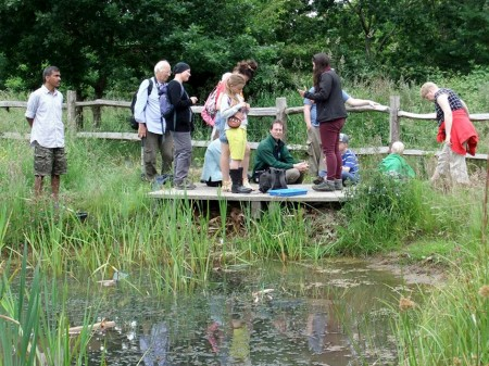 Pond dipping in the Three Brook Local Nature Reserve, Bradley Stoke, Bristol.
