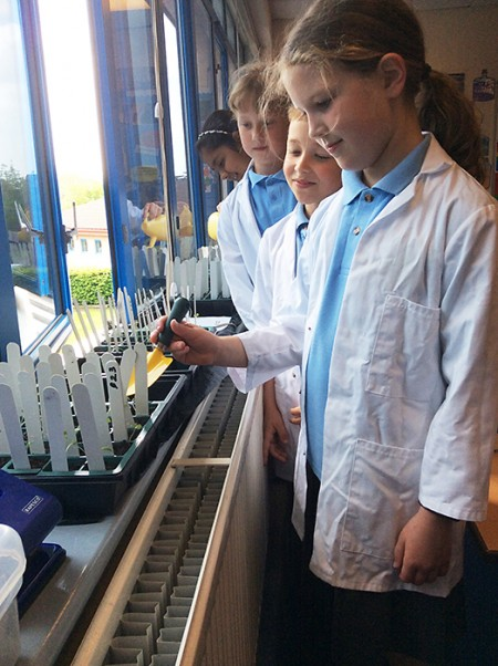 Meadow brook Primary School pupils carrying out live research as part of the Rocket Science project.