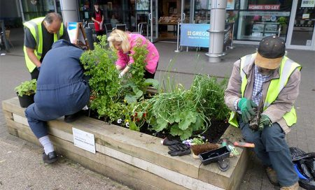 Bradley Stoke in Bloom volunteers tend a planter at the Willow Brook Centre on their June workday.