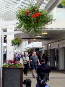 Hanging baskets at Yate Shopping Centre.