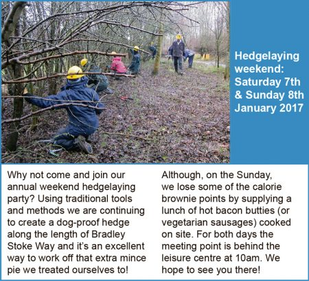 Three Brooks Hedgelaying Weekend 2017.