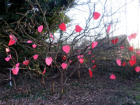 'Valentine's tree' on Savages Wood Road. Created by Bradley Stoke in Bloom.