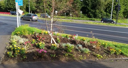 Planting at the 'Aztec Triangle' in Bradley Stoke.