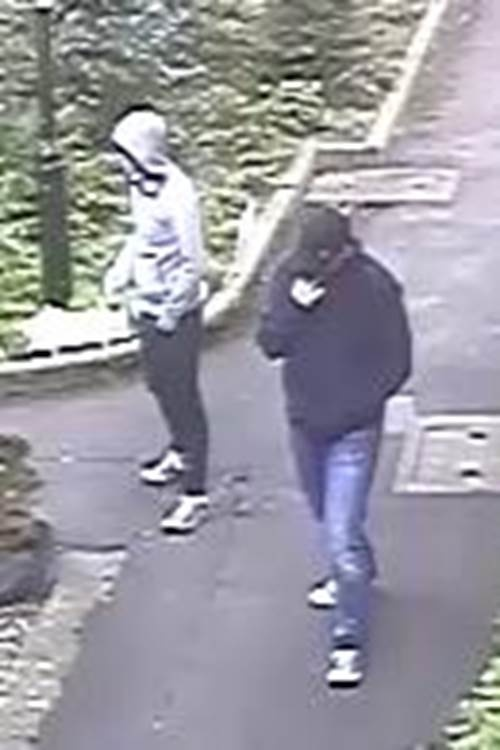 CCTV image of two men whom police are keen to trace.