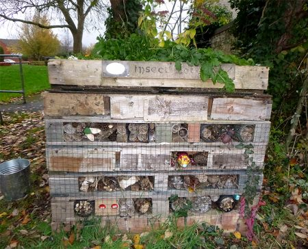 Photo of an insect hotel at The Common East.