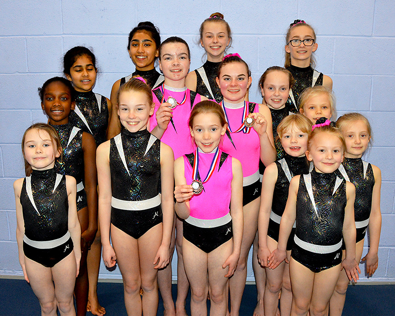 Photo of fifteen of the 16-strong squad which Bradley Stoke Gymnastics Club sent to the South West Prelims.