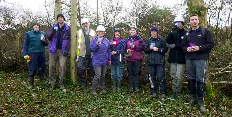 Photo of a group of volunteers on the annual hedgelaying weekend.