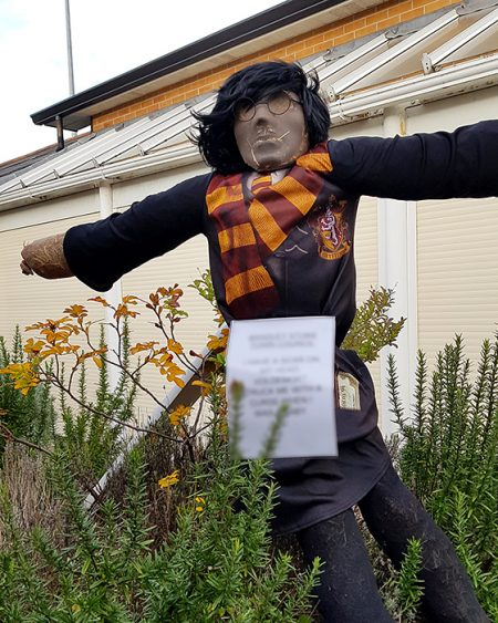 Photo of a scarecrow trail figure at the Jubilee Centre.