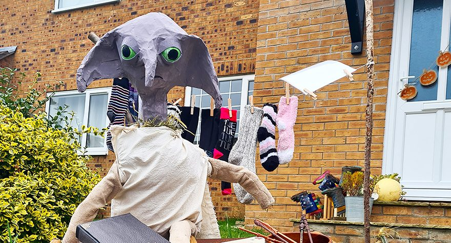 Photo of Dobby the House Elf.