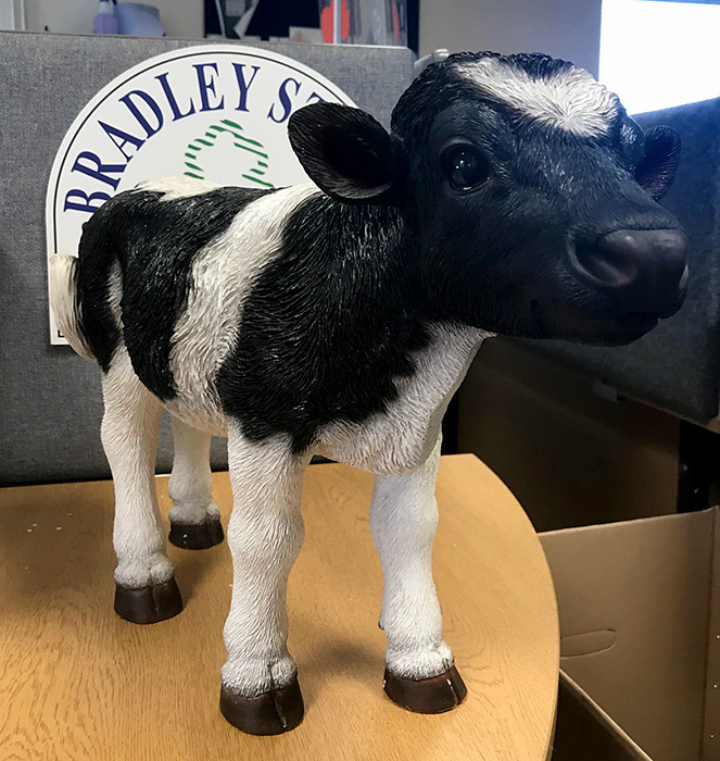 Photo of the replacement 'Debbie the calf' figure.
